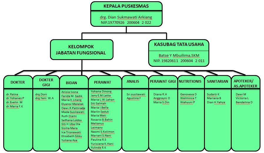 Struktur Organisasi PP
